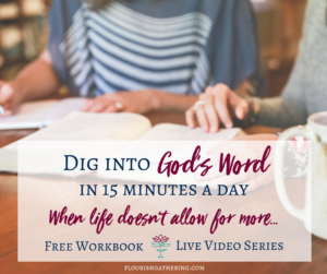 Dig into God's Word widget